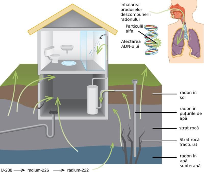 poluarea cu radon